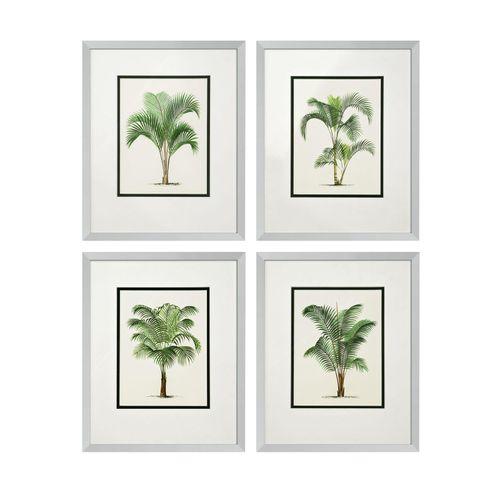 Купить Постер Prints Palms set of 4 в интернет-магазине roooms.ru